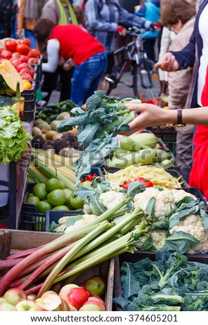 The woman chooses a sprouts in a market - stock photo