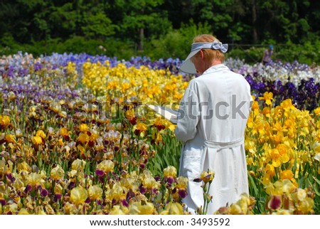 The woman observes of a greenhouse of colors in park - stock photo
