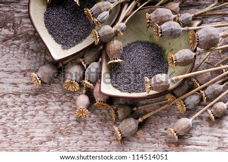 The wooden background with poppy and poppy-seeds - stock photo