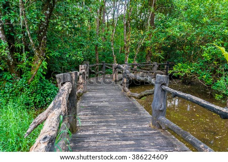The wooden bridge in the forest