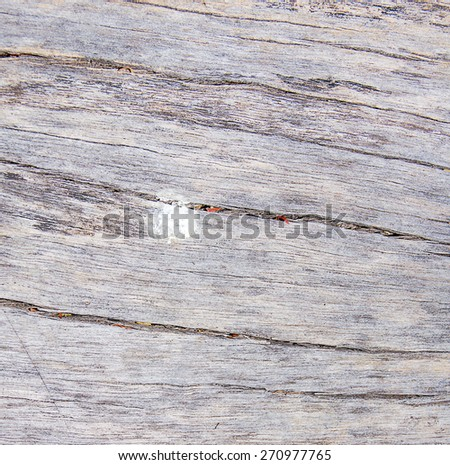 the wooden for the background