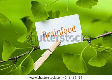 The Word Brainfood in a Ginkgo Tree - stock photo