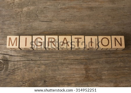 The word Migration on a wooden cubes - stock photo