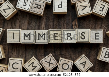 the word of IMMERSE on building blocks concept