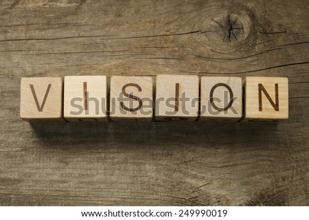 The word Vision on a wooden toy blocks - stock photo