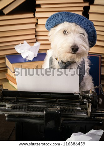 The Writer Dog - stock photo