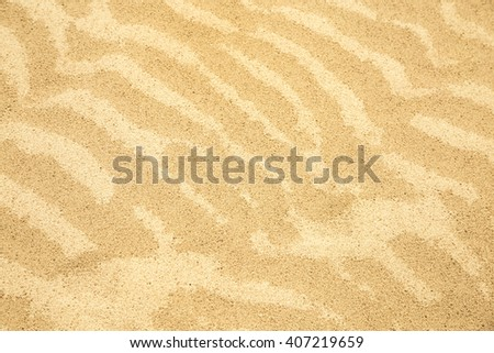 The yellow sand which has stiffened from wind drawing of waves.