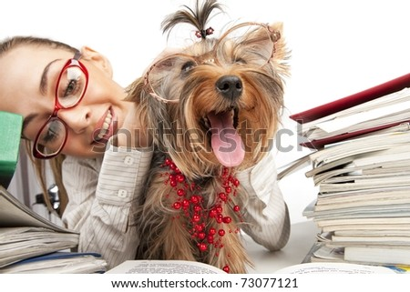The young student girl with Yorkshire Terrier on table with the books isolated on a white background - stock photo