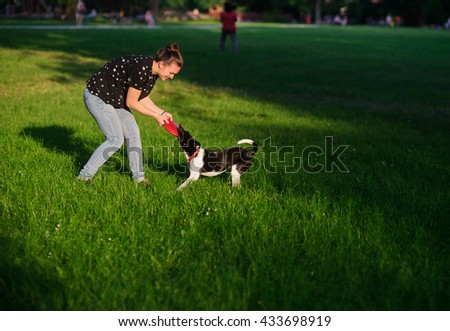 The young woman plays with a dog on a green lawn in park. She tries to pull out a disk of red color from a mouth of a dog. But the dog has seized him strong. She likes to play. - stock photo