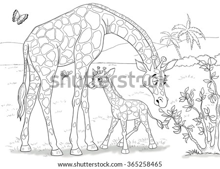 The Zoo Animals Of Africa Giraffes Cute Mother Giraffe And Her Baby