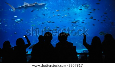 theater under water - stock photo