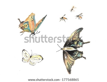 theme of traditional China--butterfly - stock photo