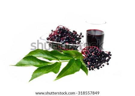 Therapeutic elderberry fruit on white isolated background - stock photo