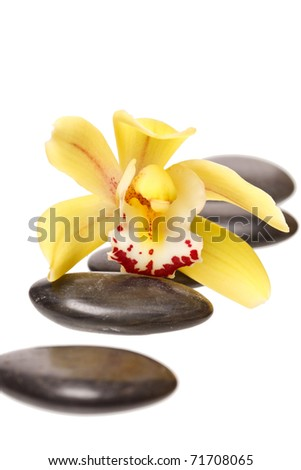 therapy stones and orchid flower - stock photo