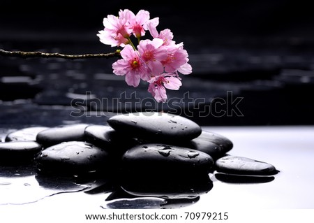 therapy stones with Pink cherry blossom sakura