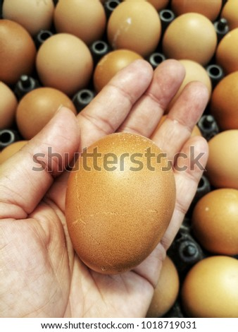 There are many fresh eggs different colors, dark brown light brown eggs have nutritional value but should not eat too. Can be eaten both fresh and cooked.