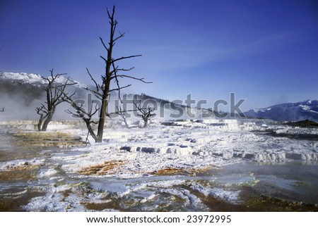 Thermal feature at Yellowstone National Park - stock photo