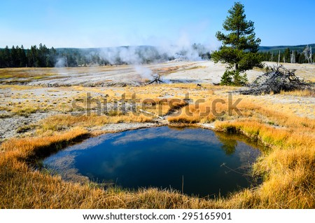 Thermal Field at Yellow Stone National Park - stock photo