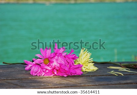 These bright magenta and yellow flowers are wilting as they are laid on a wooden picnic table at a resort with the gorgeous turquoise water in the background. - stock photo