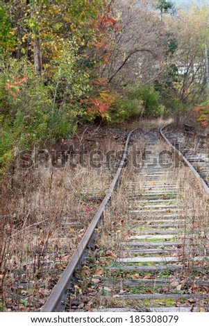 These rusty old railroad tracks seem to be leading nowhere.