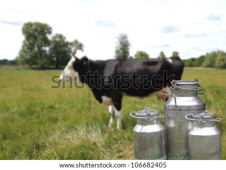 they three metal cans on milk on cow background - stock photo
