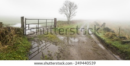 Thick fog on a country lane - stock photo