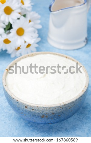 thick homemade natural yoghurt and milk, vertical - stock photo