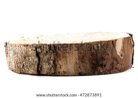 Thick slice of spruce tree isolated over white background