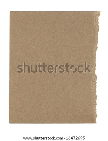 Thick torn brown paper isolated on a white background. - stock photo