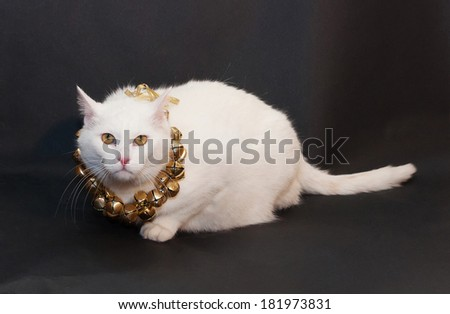 Thick white cat with yellow eyes sitting on black background with Christmas wreath of bells around his neck - stock photo