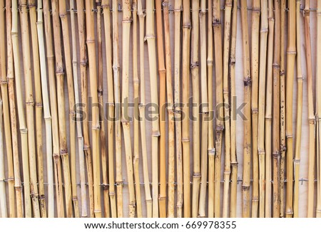 thin bamboo sticks background