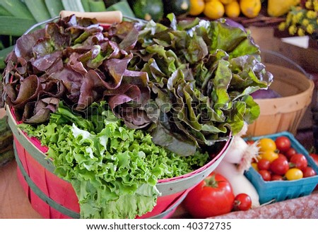 This basket of fresh organic lettuce is set with many other vegetables in the background of this photo. - stock photo