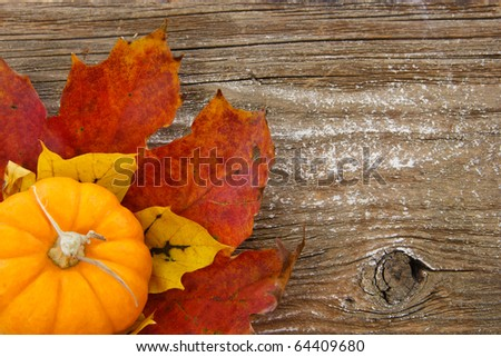 This charming Autumn-inspired image with colorful leaves is set against a rustic wood background with ample copy space.