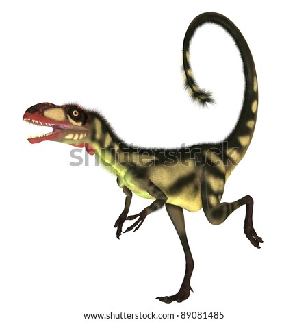 This dinosaur is a small size version of Tyrannosaurus Rex and is of the same genus. The fossil remains have been found in China. He could run 45 miles per hour and had colorful feathers. - stock photo