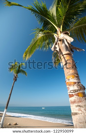 This image shows a beach scene in  Puerto Vallarta, Jalisco, Mexico - stock photo
