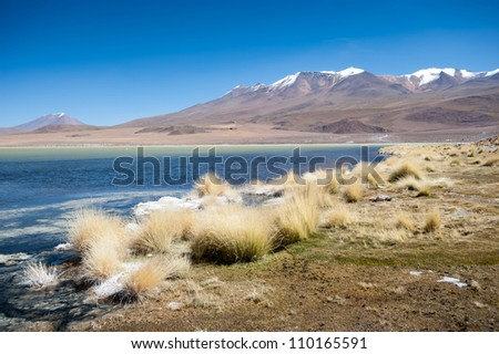 THis image shows Laguna Hedionda, in Bolivia. Flamingos frequent this lake.