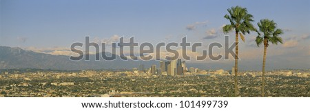 This is a clear view of downtown Los Angeles. It shows Mount Baldy and two Palm Trees from Baldwin Hills at sunset. There is snow on the mountains. - stock photo