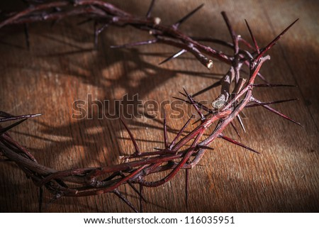 This is a crown of thorns on the Bible - stock photo