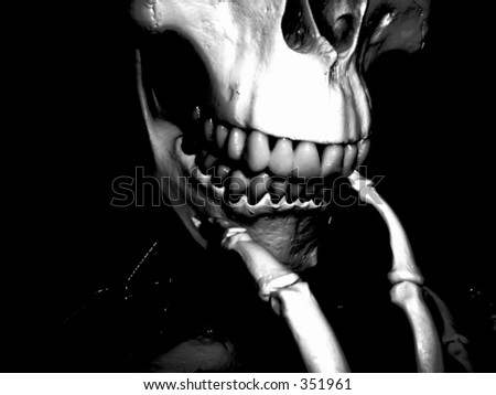 This is a medical Skelton. - stock photo