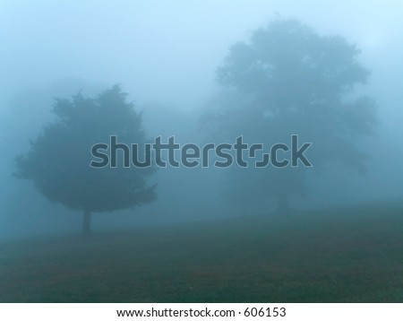 This is a misty early morning shot taken at Monmouth Battlefield State Park in NJ. - stock photo
