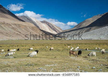this is a photo of landscape mountain,northern India