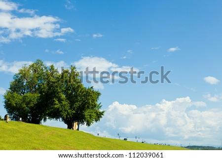 This is a photograph of a landscape of riverside I took in August. - stock photo