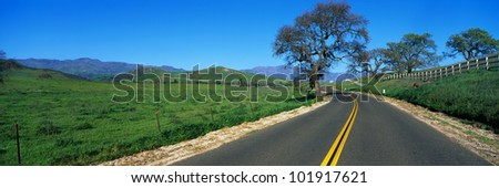 This is a road in spring in the Santa Ynez Mountains,. There are oak trees surrounding the road and a green field. - stock photo
