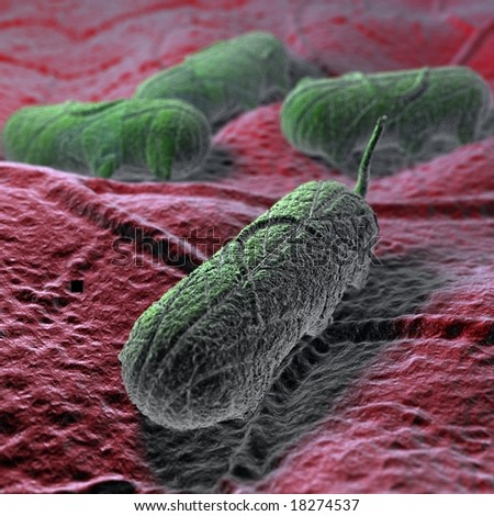 This is a Salmonella microbe. Excellent for medical presentations diagrams. ** Note: Slight graininess, best at smaller sizes