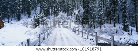 This is a small snow covered road after a winter snow storm. The road in front is a bridge with visible tire tracks from a car that has crossed the bridge. - stock photo