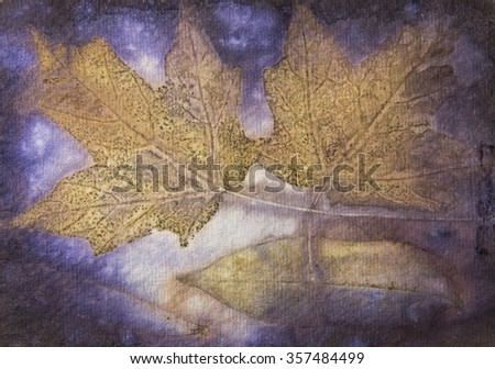 This is an image of a naturally printed leaf transfer which are done by using Eco-Printing.  The process uses the actual leaf, dipped with iron water and boiled in various types of natural dye water. - stock photo