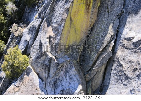 This is from Mt. San Jacinto State Park in California. - stock photo