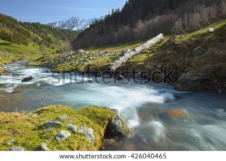This is morning stream in Caucasus valley in spring