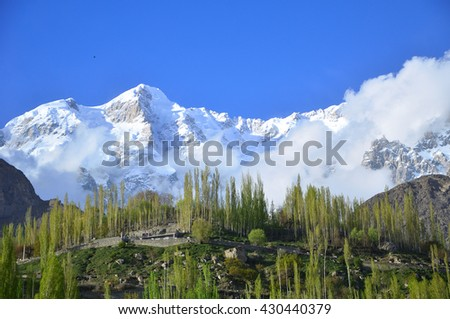 This is snow capped part of Karakorum range in Hunza valley , Karimabad northern Pakistan with green poplar tree and blue sky  - stock photo