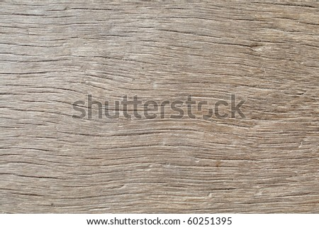 This is Texturel of a Wood Floor - stock photo